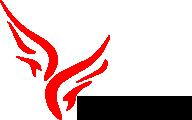 Logo   Vserstore Electronic Technology